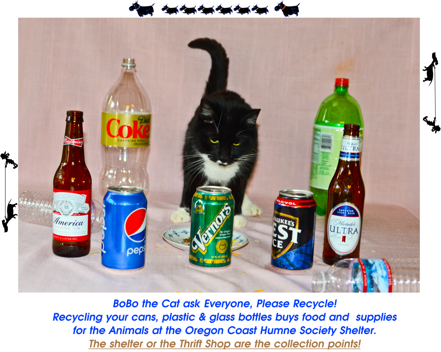 Your bottles and cans can help the homeless pets at our shelter