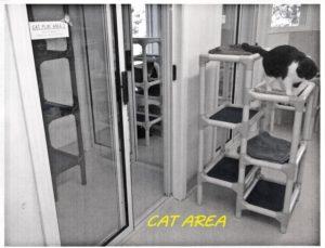 insp-shelter012