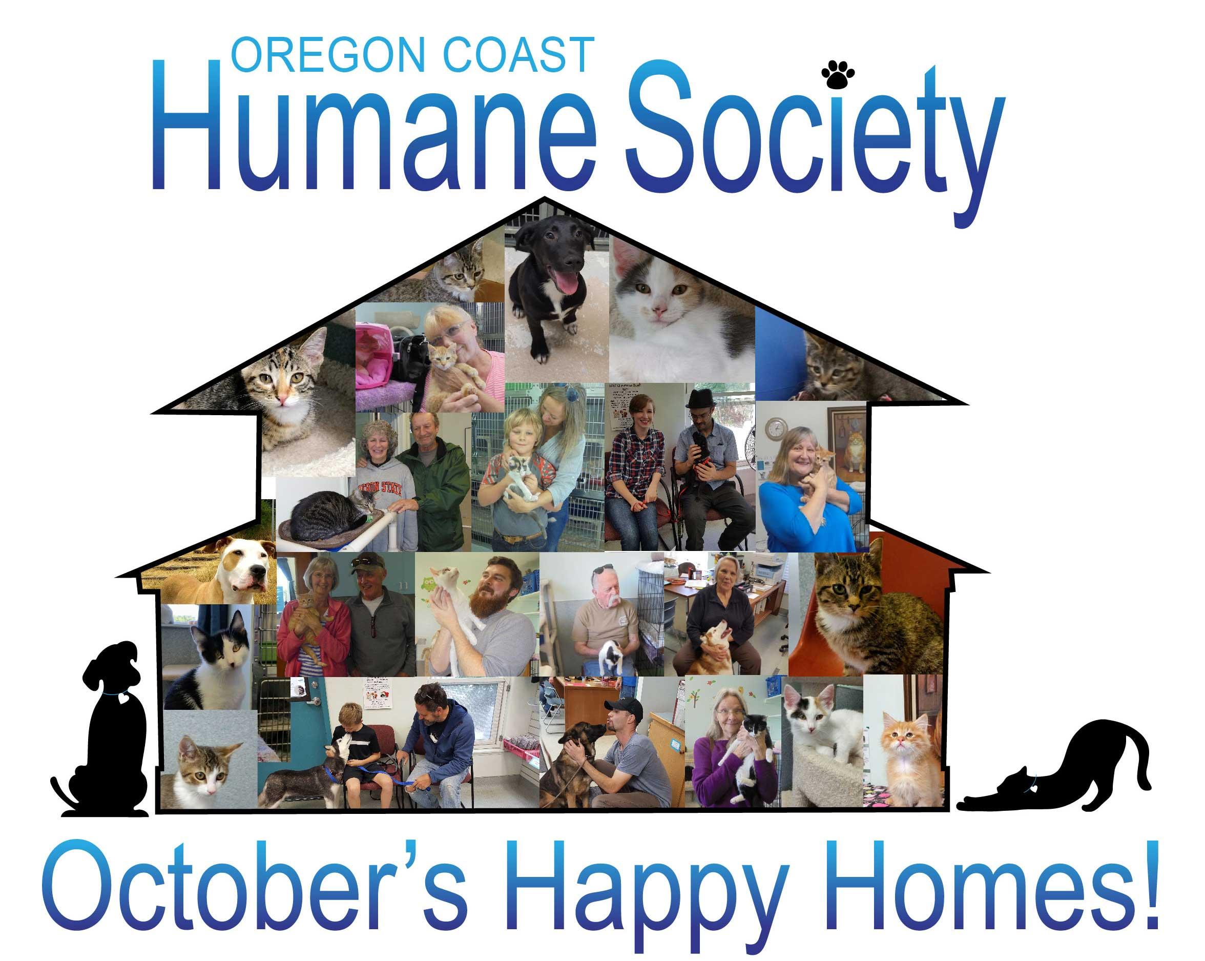 October Adoptions!!