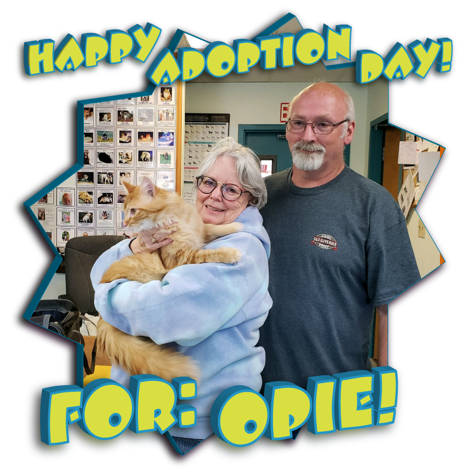 Happy Forever Home Opie!!!